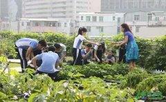 双减政策落地:现在的孩子应该怎么学习?